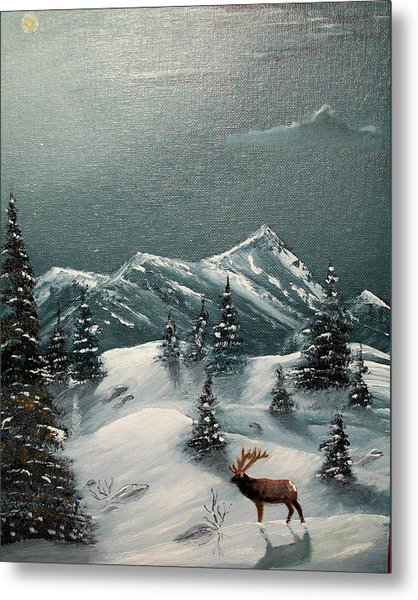 A Cold Montana Night Metal Print