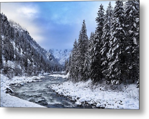 A Cold Winter Day  Metal Print