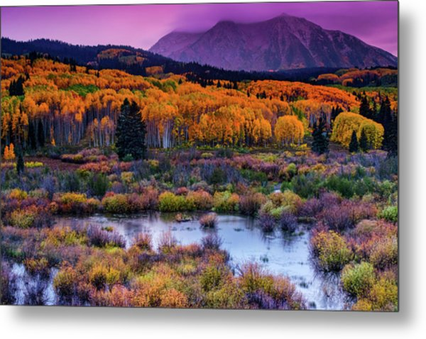 A Colorado Fall Along Kebler Pass Metal Print