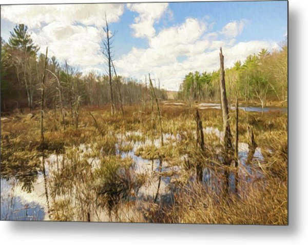 A Connecticut Marsh Metal Print