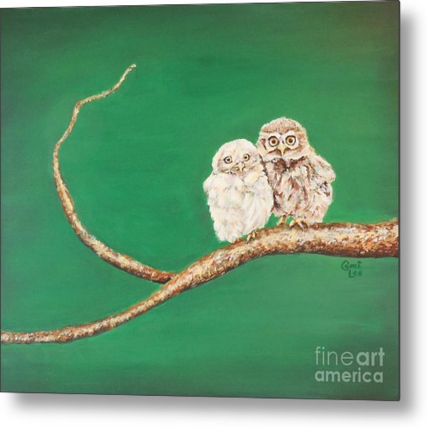 A Couple Of Owls Metal Print