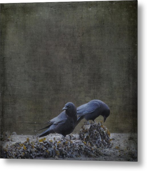 Metal Print featuring the photograph Blackbirds At The Beach by Sally Banfill