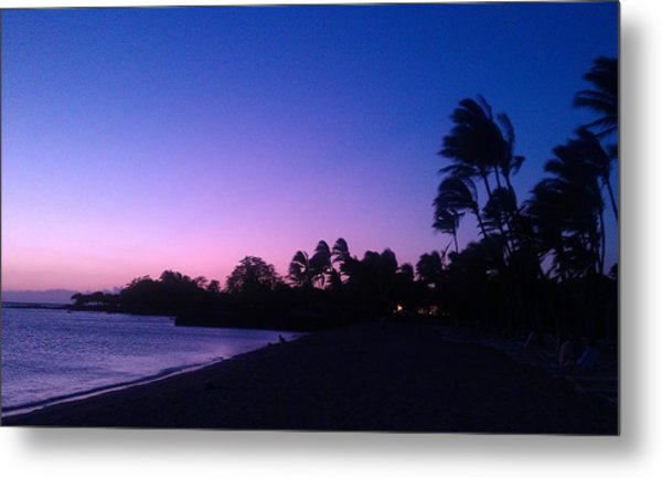 A Day In Paradise Metal Print by Anne Gerstenberger