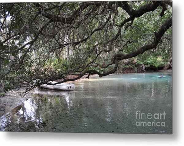 A Day Of Snorkeling Metal Print
