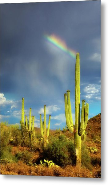 Metal Print featuring the photograph A Divine Touch by Rick Furmanek