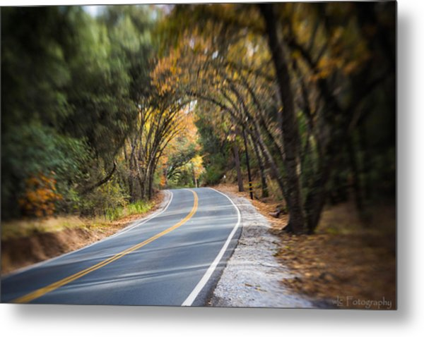 A Fall Roadway Metal Print
