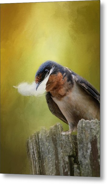 A Feather For Her Nest Metal Print
