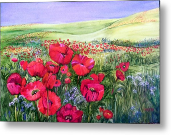 A Field Of Poppies Metal Print