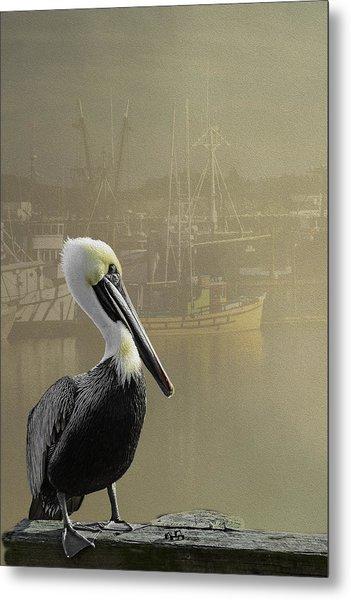 A Foggy Pelican Sunset Metal Print