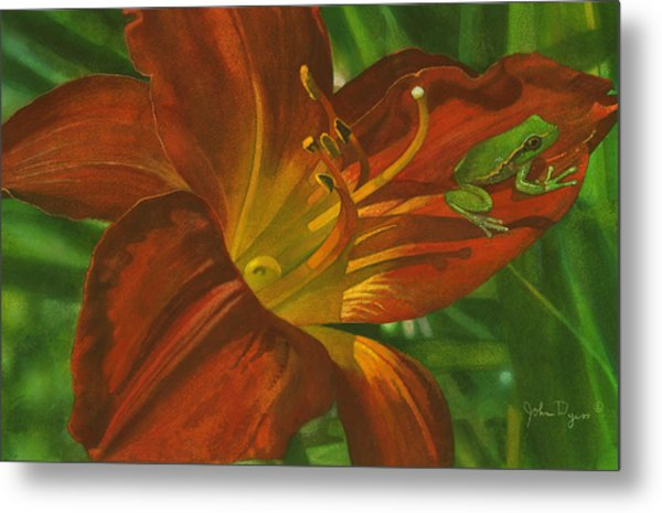 A Frog On A Lily Metal Print