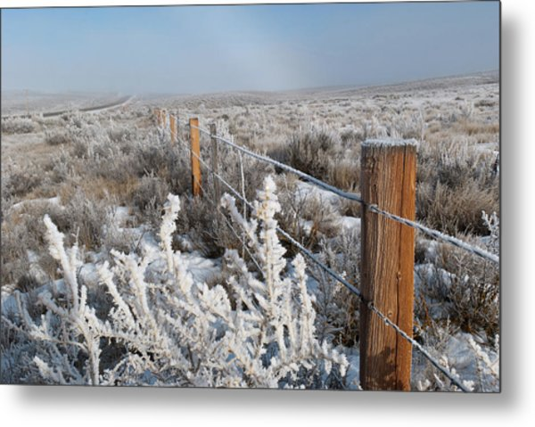 A Frosty And Foggy Morning On The Way To Steamboat Springs Metal Print