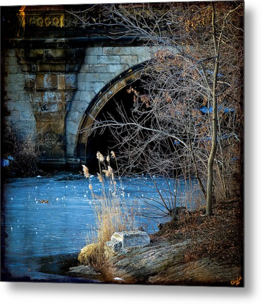 A Frozen Corner In Central Park Metal Print