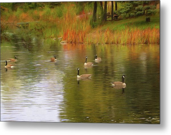 A Gaggle Of Geese Metal Print