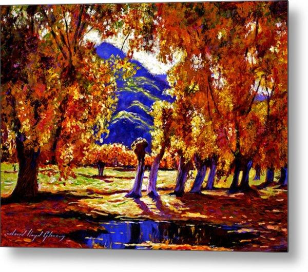 A Galaxy Of Autumn Color Metal Print by David Lloyd Glover