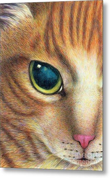 A Ginger Cat Face Metal Print