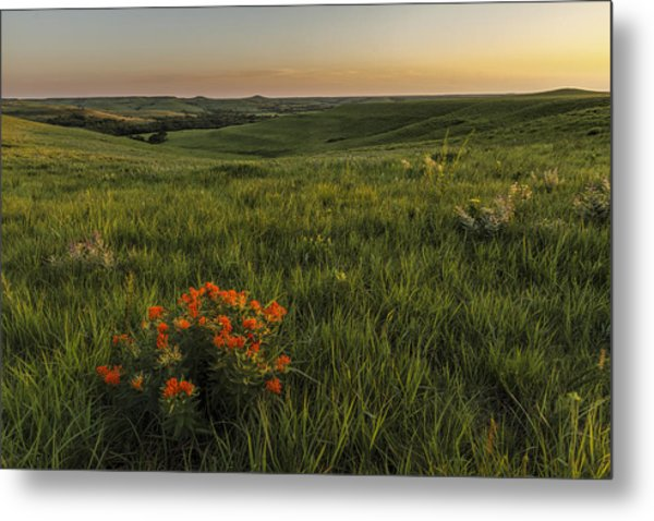 A Great View Of The Flint Hills Metal Print