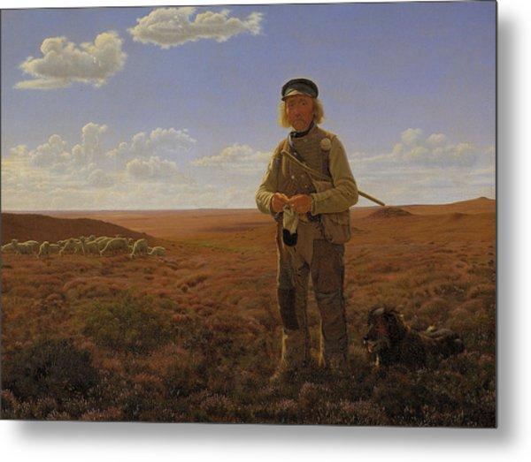A Jutland Shepherd On The Moors Metal Print