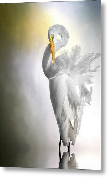 A Lady Needs Her Privacy Metal Print