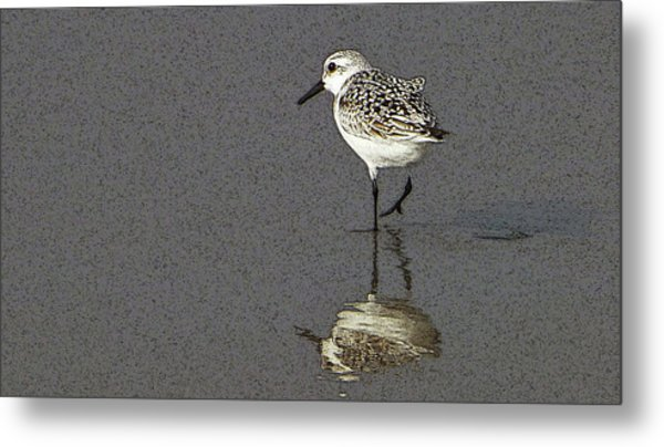 A Little Bird On A Beach Metal Print