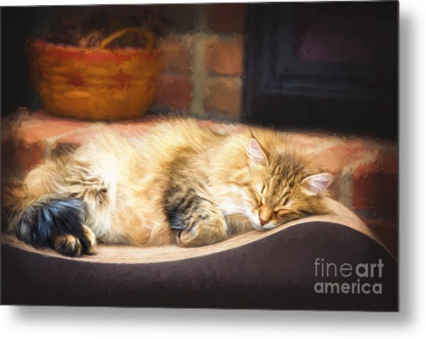 A Long Winter's Nap Metal Print