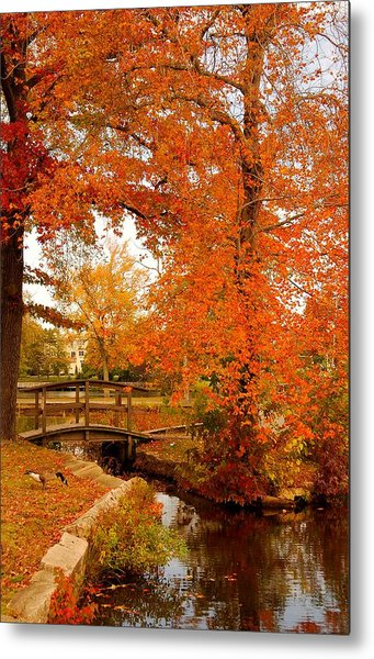 A Morning In Autumn - Lake Carasaljo Metal Print