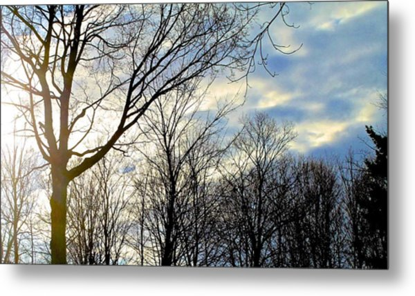 A Morning Sun Metal Print