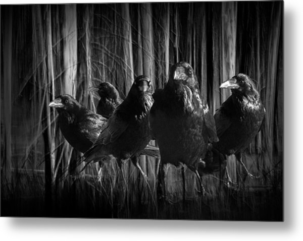 A Murder Of Crows Among The Forest Trees Metal Print