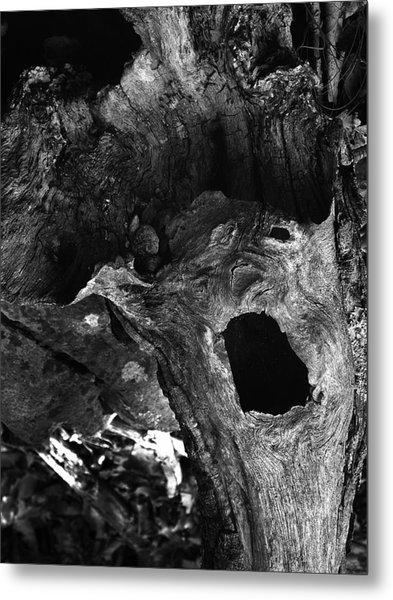 A Natural Primordial Scream Metal Print