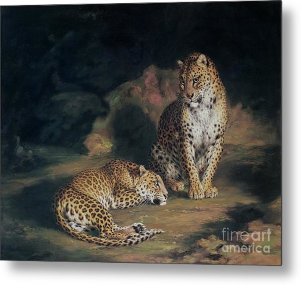 A Pair Of Leopards Metal Print