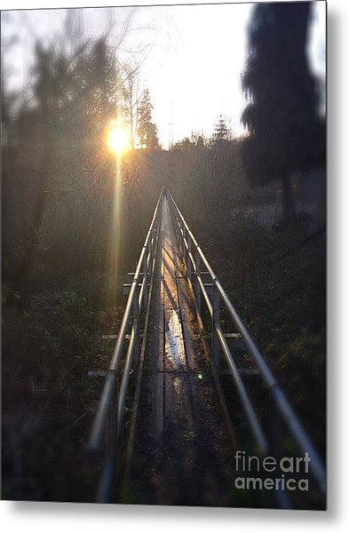 A Path Into The Unknown Metal Print