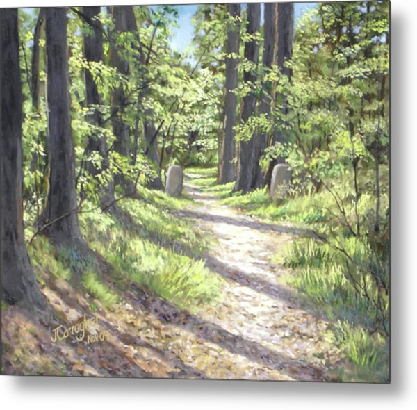 A Path Well-travelled Metal Print by Joseph Carragher