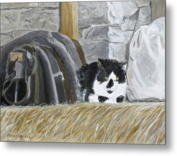 A Penns Valley Barn Kitty Metal Print