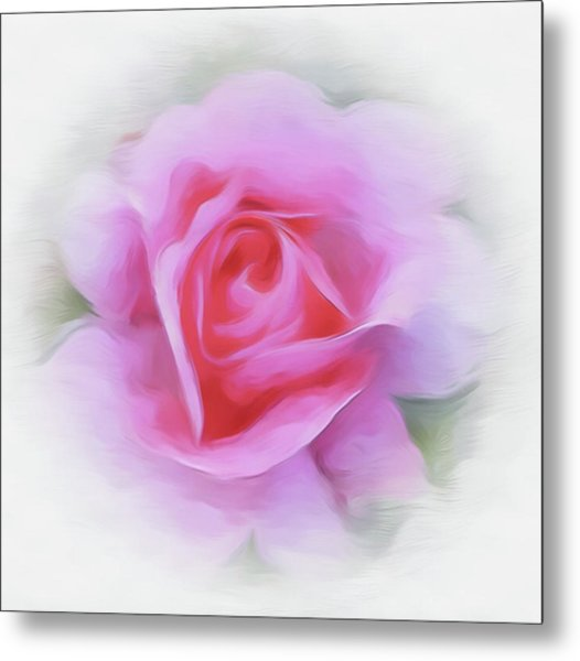 A Perfect Pink Rose Metal Print