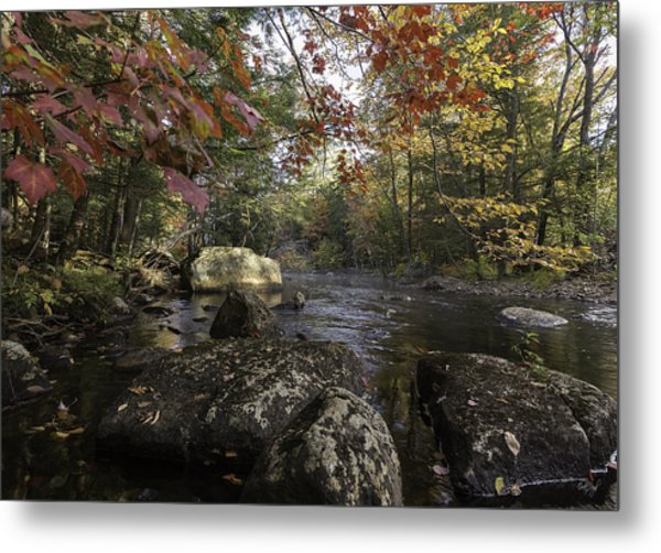 A Place To Ponder Metal Print