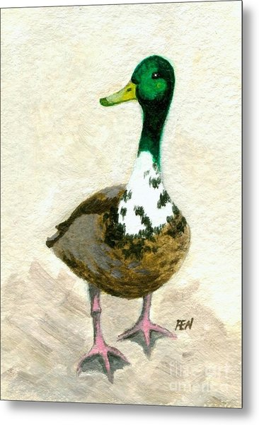 A Proud Duck Metal Print