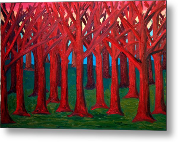 A Red Wood - Sold Metal Print by Paul Anderson