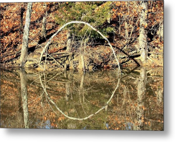 A Ring On The Pond In Fall Metal Print