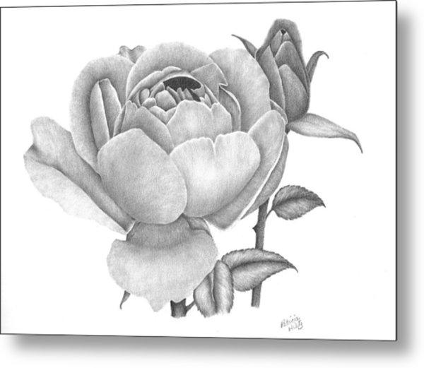 A Rose Bloom Metal Print