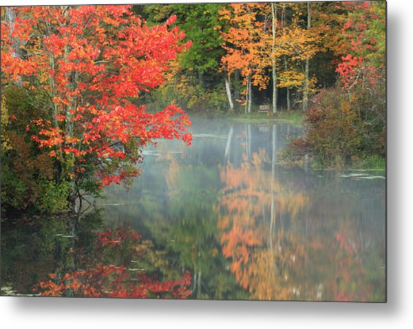 A Seat To Watch Autumn Metal Print