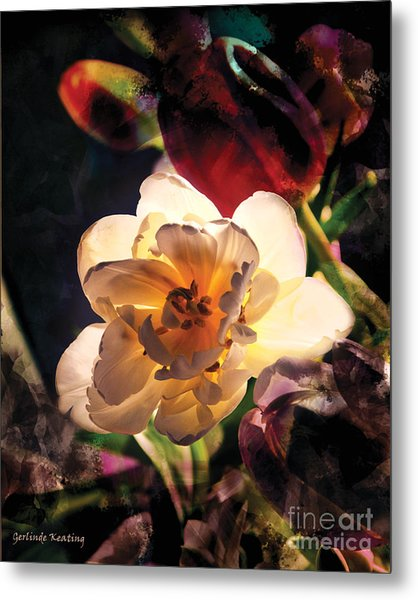 A Shining Beauty Metal Print