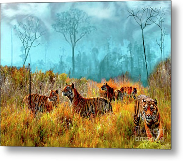 A Streak Of Tigers Metal Print
