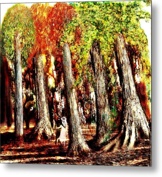 A Stroll Through The Woods Metal Print by Mark Conrad