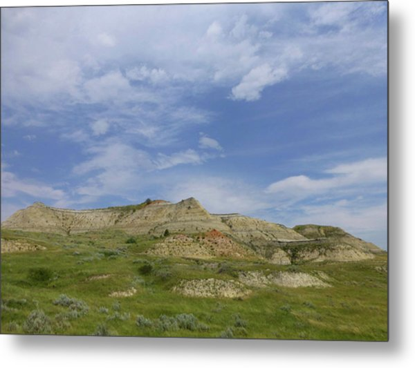A Summer Day In Dakota Metal Print