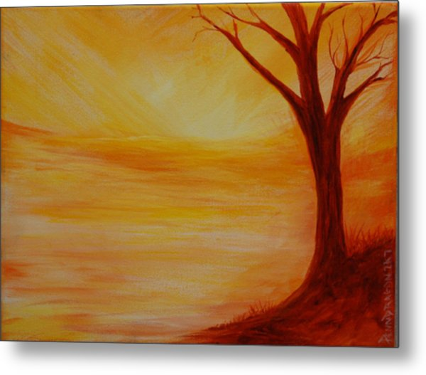 ...a Sun Sets Metal Print by Amy Stewart Hale
