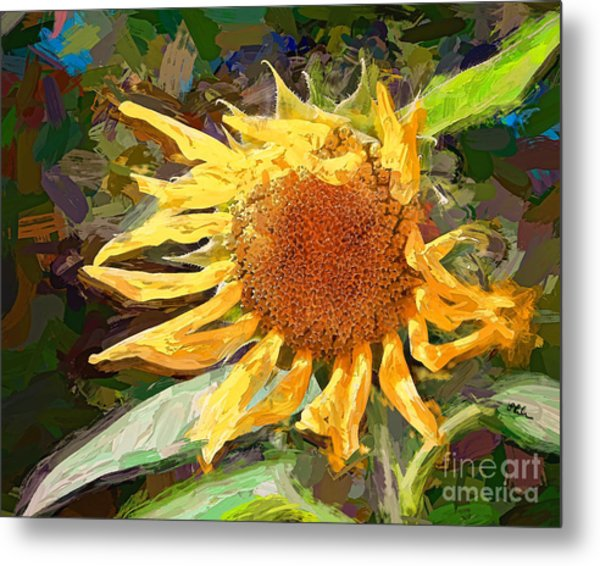A Sunkissed Life Metal Print