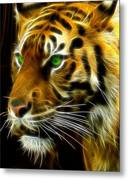 A Tiger's Stare Metal Print