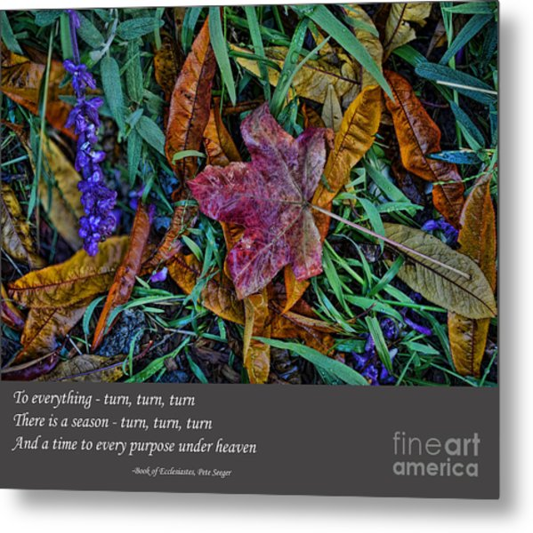 A Time To Every Purpose Under Heaven Metal Print