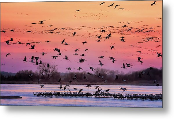 Metal Print featuring the photograph A Vibrant Evening by Susan Rissi Tregoning