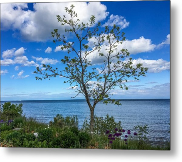 A Walk Along Lake Michigan Metal Print