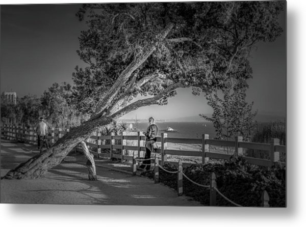 A Walk In The Park B And W Metal Print
